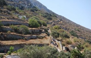 View from the path between Potamos and Agia Mamos