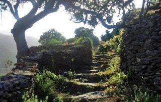 Walking path 2. Fotodotis