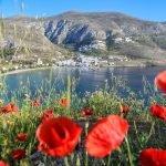 Besök Amorgos i vår