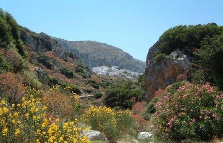 Amorgos Natur och Geografi