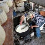 Ost tillverkning på Amorgos - Foto: Ilias Fountoulis