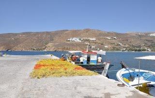 Fiska på Amorgos