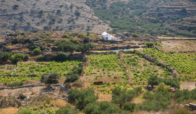 Agrotourism on Amorgos